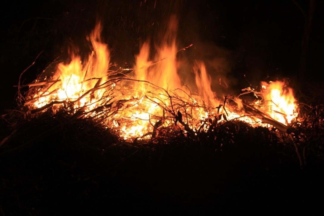 Image result for D&D bonfire
